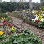 spring in the wildlife garden
