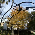 autumn tree and memorial archway